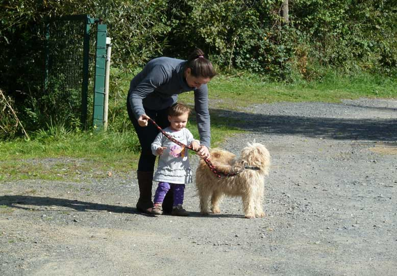 Bild Mutter geht mit Kleinkind und Schifamhund spazieren