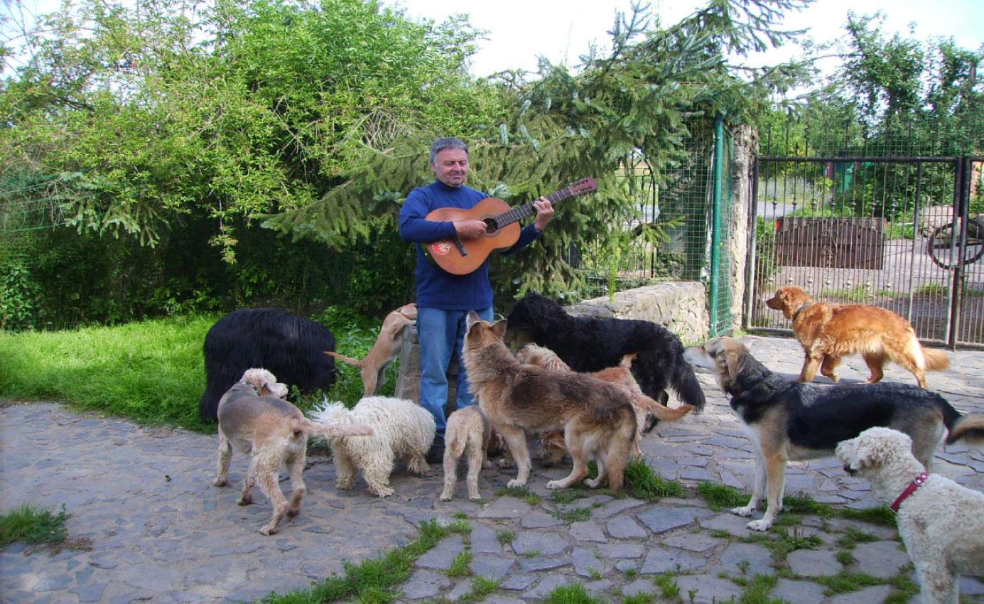 Bild Züchter Rainer Schiener mit Gitarre und Urlaubs-Hunden